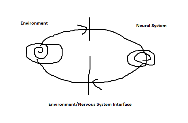 Nervous System-Environment-Better-Picture
